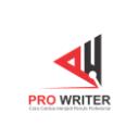 Pro Writer