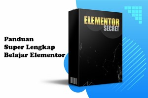 Elementor Secret