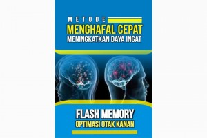 Flash Memory Optimasi Otak Kanan