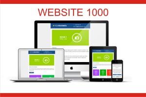 Jasa Website Developer 1000, komplit domain hosting desain
